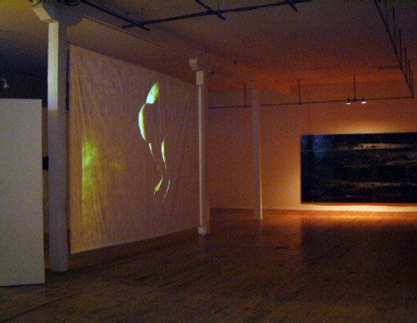 Here the scrim material is used for a projection surface in a fine art display.  The translucent projection surface was used to allow patrons to see the exhibit both on the front and the back.